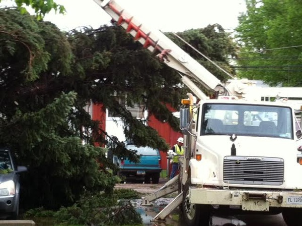 Sudden winds leave residents picking up tree limbs, debris