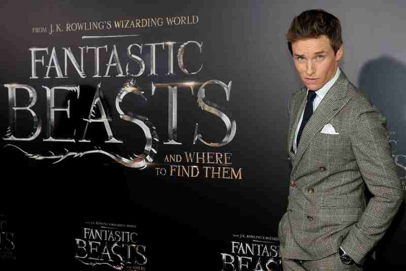 Eddie Redmayne auditioned to play Tom Riddle in Harry Potter sequel