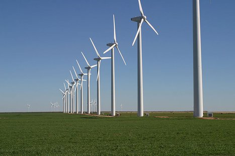 The Brazos Wind Farm, also known as the Green Mountain Energy Wind Farm, near Fluvanna, Texas. Note cattle grazing beneath the turbines. By Leaflet (Own work) [CC-BY-SA-3.0 (http://creativecommons.org/licenses/by-sa/3.0)], via Wikimedia Commons