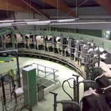 Rotary milking parlor By Gunnar Richter Namenlos.net (Own work) [CC-BY-SA-3.0 (http://creativecommons.org/licenses/by-sa/3.0)], via Wikimedia Commons