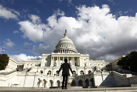 A tourist gazes up towards the dome of the U.S. Capitol in Washington January 25, 2010. REUTERS/Kevin Lamarque