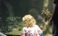 Shedd Aquarium - 02/13/11 19