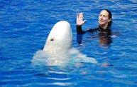 Shedd Aquarium - 02/13/11 17