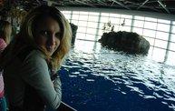 Shedd Aquarium - 02/13/11 14