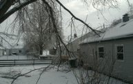 Ice Storm 2011: Cover Image