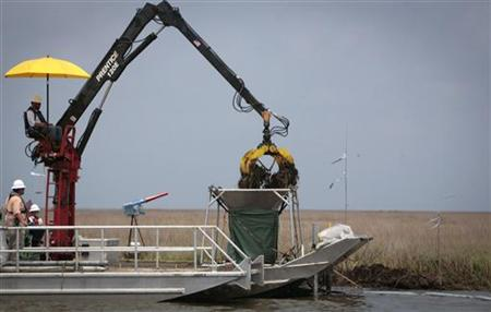 Workers remove oil soaked grass from marshland one year after the BP Oil Spill near Myrtle Grove, Louisiana