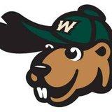 Woody Woodchuck