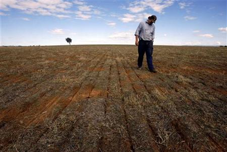Farmer Fagan inspects the rows of seeds sown by his GPS-guided disc air seeder rig in a paddock on his property near Cowra