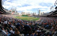 Detroit Tigers vs Arizona Diamondbacks - 06/25/11 14