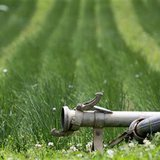 The plant watering system is seen shut down at a farm where E.coli bacteria was found in Nieder-Erlenbach on the outskirts of Frankfurt
