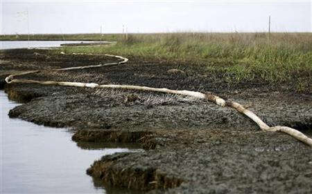 Oiled and dead marsh grass mixed with absorbent boom is seen on the banks of Barataria Bay due to the BP oil spill near Port Sulphur, Louisi