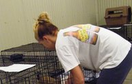 Missouri Dogs Arrive at Headin' Home Pet Rescue 1