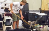 Missouri Dogs Arrive at Headin' Home Pet Rescue 3
