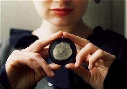 A sample of the original penicillin mould cultivated by scientific pioneer Alexander Fleming, which ..