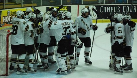 WMU Hockey Team
