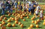 Harvestfest 2011 5