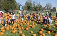 Harvest Fest 2011 10