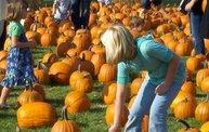 Harvest Fest 2011 27
