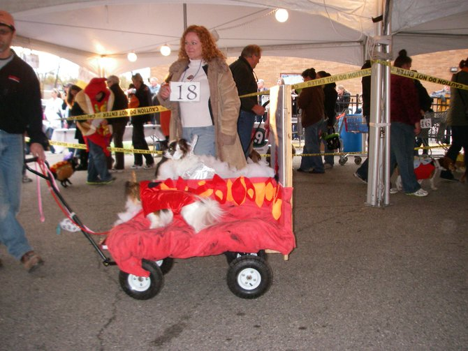 23rd Annual Costume Contest for Dogs