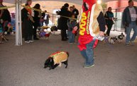 23rd Annual Costume Contest for Dogs 24