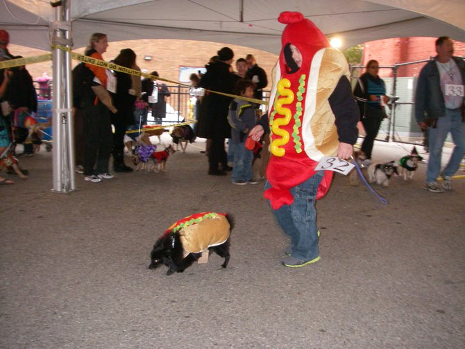 23rd Annual Costume Contest for Dogs 10/28/2011