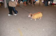 23rd Annual Costume Contest for Dogs 21