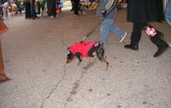 23rd Annual Costume Contest for Dogs 20