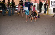 23rd Annual Costume Contest for Dogs 27