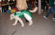 23rd Annual Costume Contest for Dogs 11