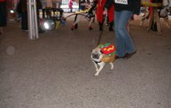 23rd Annual Costume Contest for Dogs 26