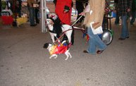 23rd Annual Costume Contest for Dogs 8