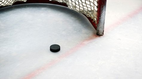 Hockey puck (Reuters)