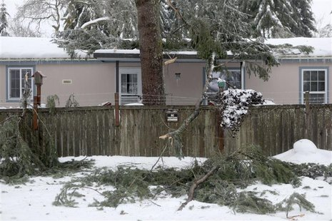 Branches, heavy from snow, lay on a house after falling off in Rochester, Washington