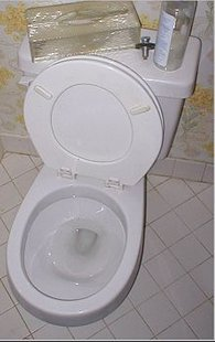 Toilet (courtesy of Wikipedia)