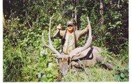Trophy Buck 11