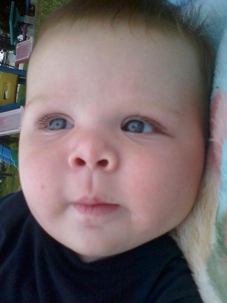 Brody h