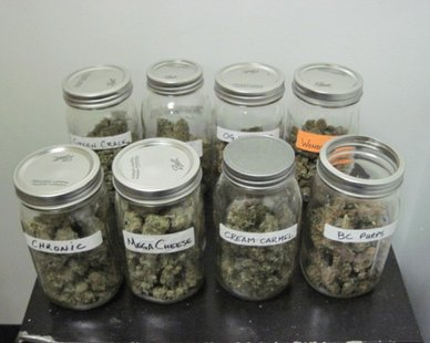 Evidence seized in a raid of a South Haven business on Apr. 5, 2012. (photo courtesy Van Buren Co. Sheriff's Dept.)