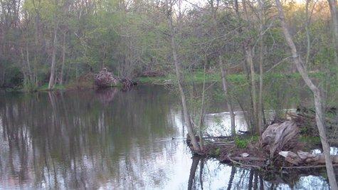 Kalamazoo River Cleanup continues