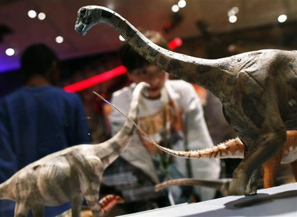 "Visitors look at dinosaur replicas at ""The World's Largest Dinosaurs"" exhibit at the American Museum of Natural History in New York April 13"