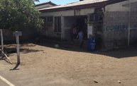 Mapleview Animal Hospital in Guatemala 14