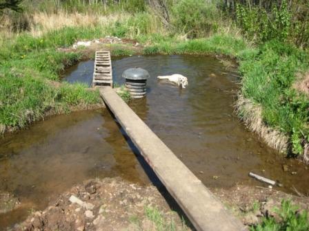 Homemade Pond And Artesian Well Crazy Rick 39 S Compound