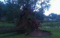 Storm Damage 2012 6