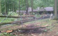 Storm Damage 2012 4