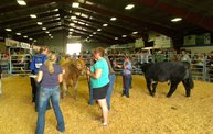 Wisconsin Valley Fair 2012 27