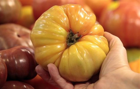 An organically grown Heirloom tomato is seen in the produce section at the Whole Foods grocery story in Ann Arbor, Michigan, March 8, 2012.