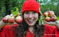 Bayfield Applefest: Cover Image