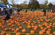 Harvestfest 2012 1