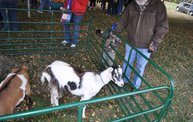 Harvestfest 2012 3