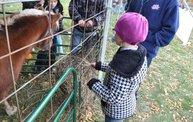 Harvestfest 2012 11