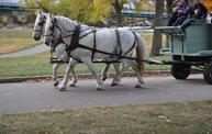 Harvestfest 2012 23